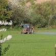 Farm tractor spraying field before planting - Stock Photo