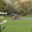 Royalty-Free Stock Photo: Farm tractor spraying field before planting