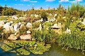 Garden with pond — Stock Photo