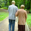 Senior couple in the park - Stock Photo