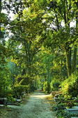 Begraafplaats in park — Stockfoto