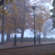 Senior couple in misty fall park in morning — Stock Video #13869445