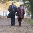 Stock Video: Senior couple in misty fall park in morning