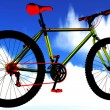 Professional freestyle bicycle — Foto de stock #13879845
