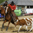 International Rodeo Contest - Stock Photo