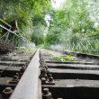 Old rails — Stock Photo