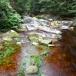 Mountainous creek — Stock Photo