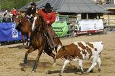 International Rodeo Contest — Stock Photo