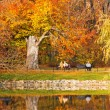 Park in fall time — Stock Photo