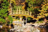 Japon bahçe köprü — Stok fotoğraf