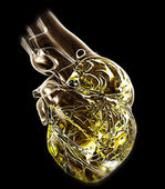 Model of human heart — Stock Photo