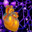 Human heart model — Stock Photo