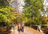 Senior couple in the park — Stock Photo