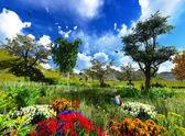 Våren äng — Stockfoto