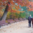 Senior couple in park — Stock Photo #18128235