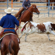 Rodeo competition is about to begin - Stock Photo