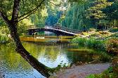 Botaniska trädgården — Stockfoto