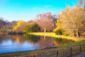 Lake in the park — Stock Photo