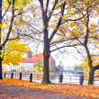 Autumnal scenery in Wroclaw, Poland — Stock Photo