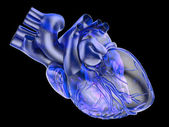 Artificial human heart — Stock Photo