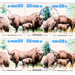 Stock Photo: Bisons on Polish vintage postage stamp,