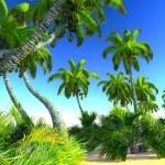 Hawaiian paradise — Stock Photo #19760907