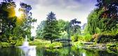 Bron i den japanska trädgården — Stockfoto