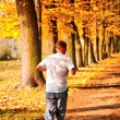 Stock Photo: Male jogger in park