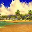 Tropical paradise beach — Stock Photo #21730329