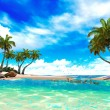 Tropical paradise beach — Stock Photo #21730609