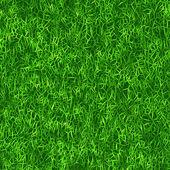 Grassy background — Stock Photo