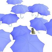 Umbrella & wellingtons — Stock Photo