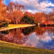 Pond in the park — Stock Photo