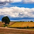Awesome skyscape over land — Stock Photo