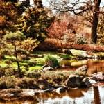 ogrod japoński — Zdjęcie stockowe #30023267