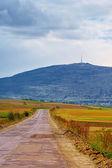 Rural scenery — Stock Photo