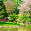 Japanese garden — Stock Photo #33219811