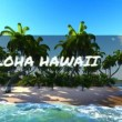 Stock Video: Alohfrom Hawaii