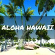 Aloha from Hawaii — Vídeo de stock