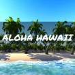 Aloha from Hawaii — Vídeo Stock