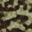 Stock Photo: Snake skin pattern
