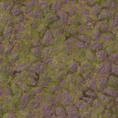 Mossy pavement — Stock Photo