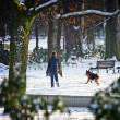 Winter time in park — Stock Photo