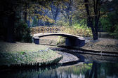 Ponte japonesa — Foto Stock