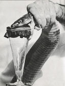 Venom extraction — Stock Photo