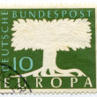Tree drawn on postage stamp — Stock Photo