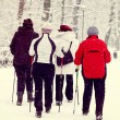 Nordic walking in winter — Stockfoto