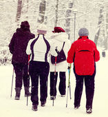 Nordic walking in winter — Stock Photo