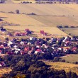 Stock Photo: Aerial view of village
