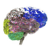 Model of human brain i — Stock Photo